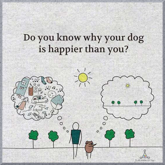 Do-you-know-why-your-dog-is-happier-than-you