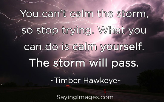 quote-about-calm-yourself-the-storm-will-pass